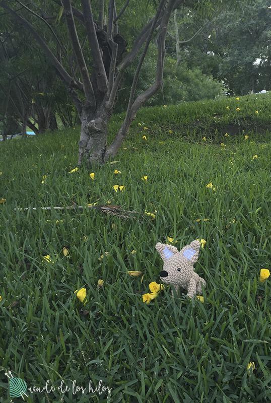 Amigurumi perro pincher 5