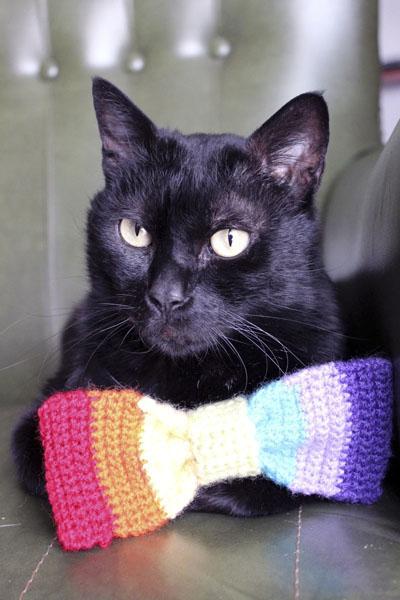 crochet pajarita arcoiris 2